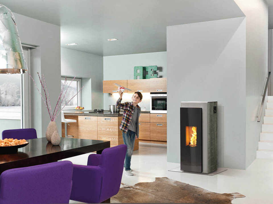 Brushed Steel Wood Burning Stove
